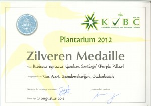 Zilveren Medaille1 300x211 Over Ons